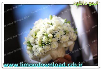 عروس و دامادهای با حجاب هدیه میگیرند